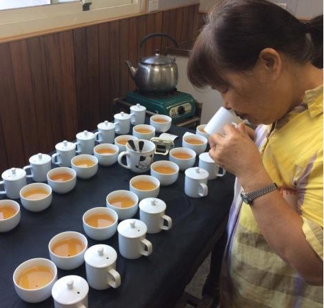 2017年鹿谷冬茶紀錄 (鹿谷冬季比賽茶紀錄)