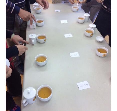 2017年 冬季 永隆鳳凰社區比賽茶講評(主審:陳國任、黃正宗)