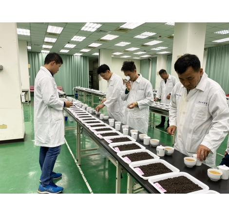 2020鹿谷農會比賽茶初審&冬茶紀錄