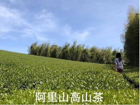 環保包系列 -【阿里山淺焙清香】
